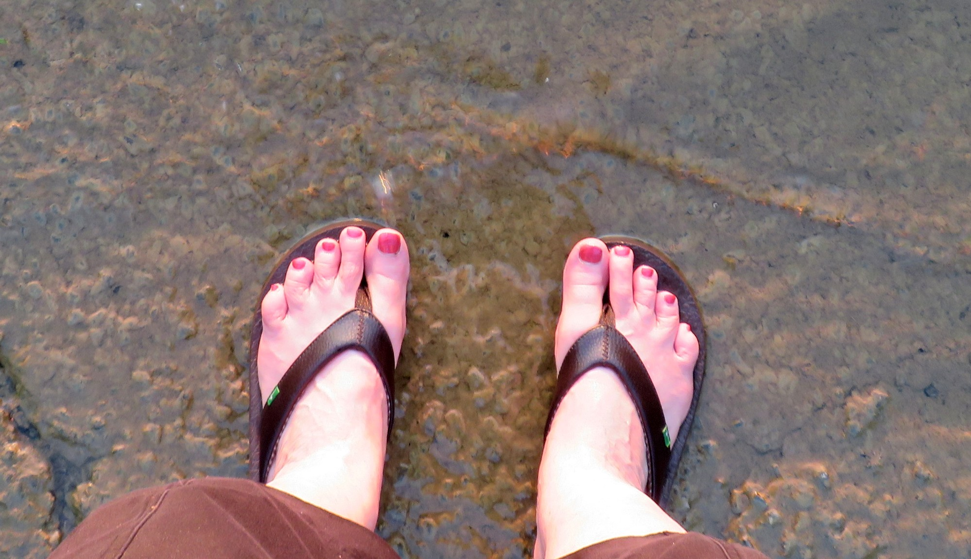 Feet in the water making ripples